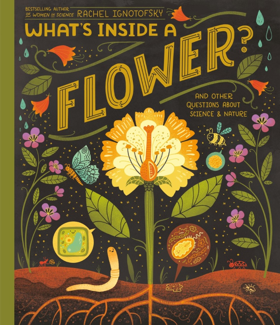 Book cover of flower in soil