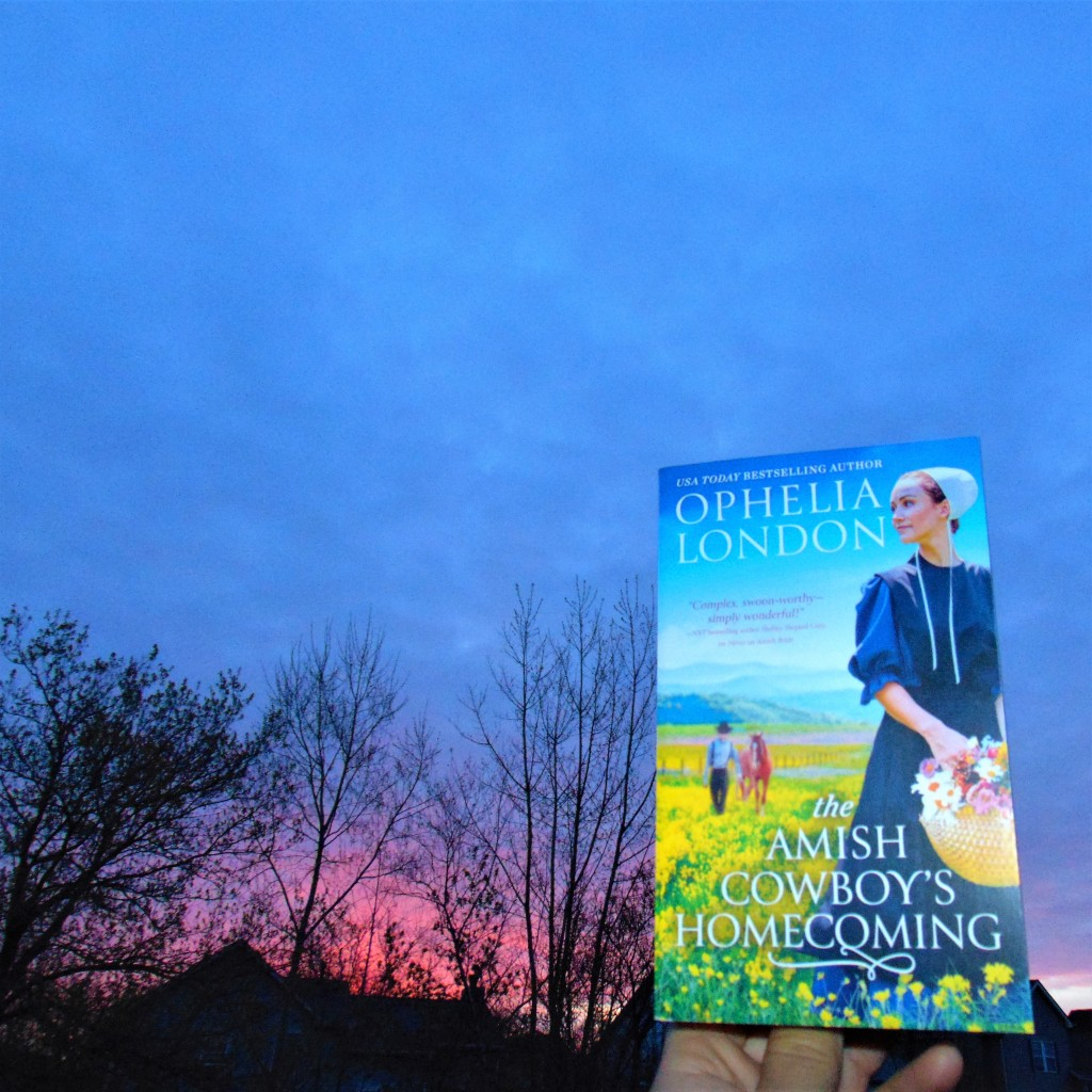 The Amish Cowboy's Homecoming book in front of sunrise