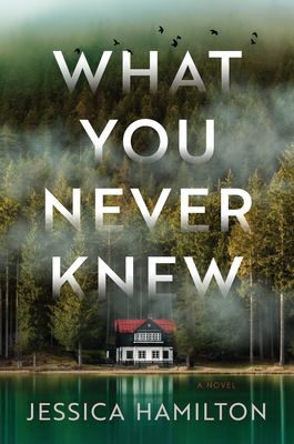 Book Cover - foggy forest-covered land with water and house at edge of water