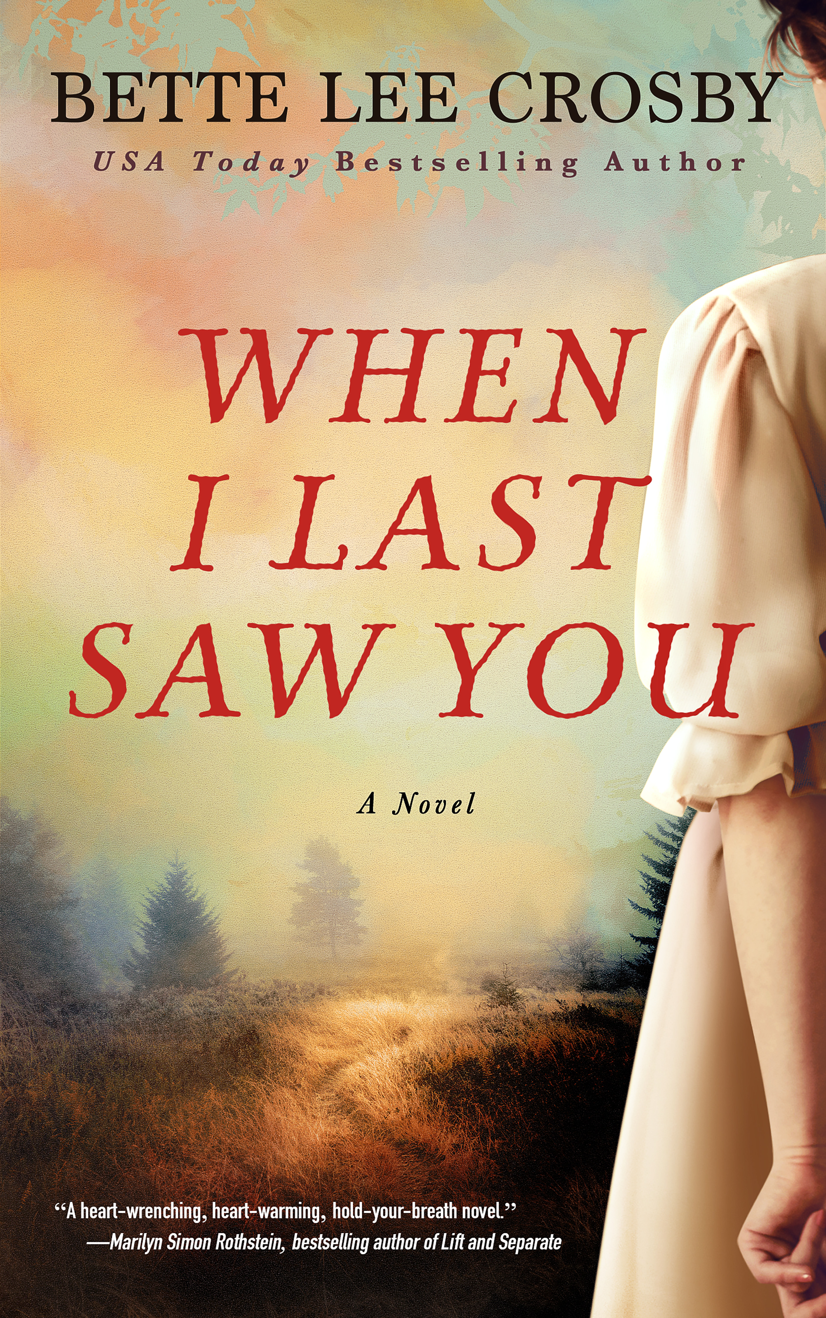 When I Last Saw You book cover with girl's side visible with