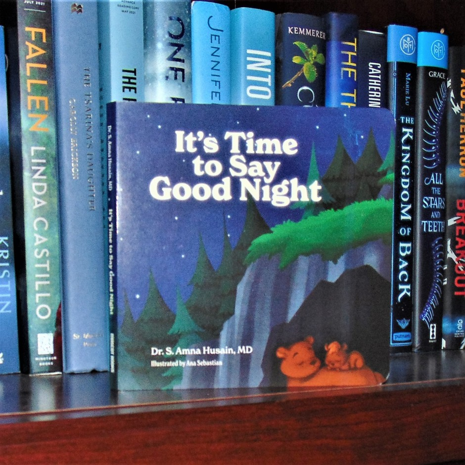 Its Time To Say Goodnight book on bookshelf